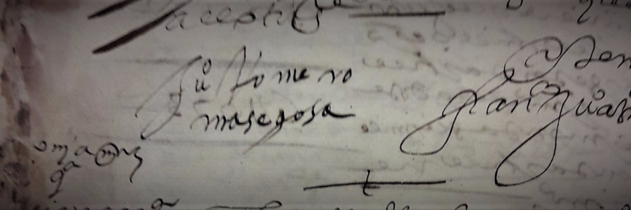 firma Juan Romero Masegosa